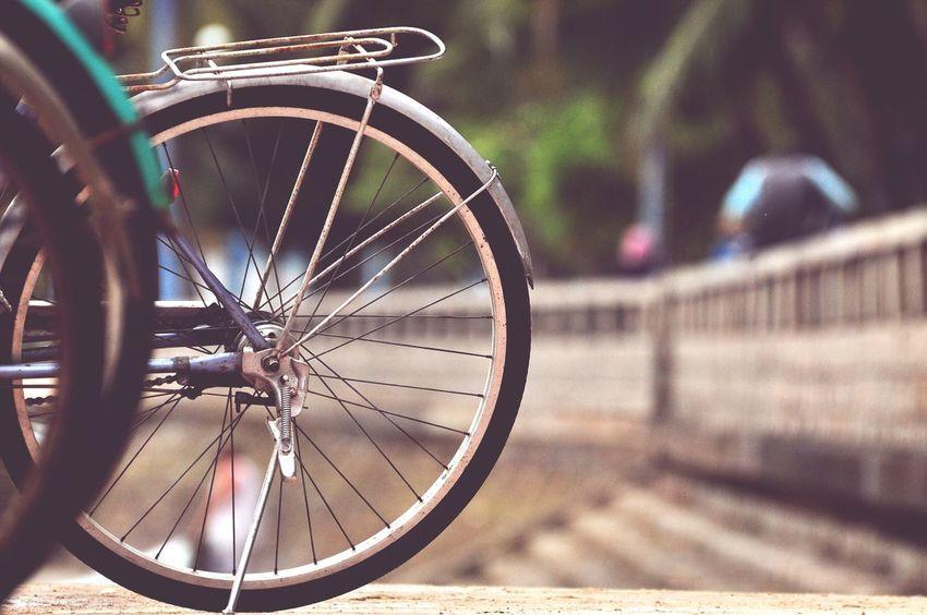 베트남 붕타우 World In Wheel Photopackers Vung Tau, Viet Nam Vietnam EyeEm Selects Wheel Bicycle