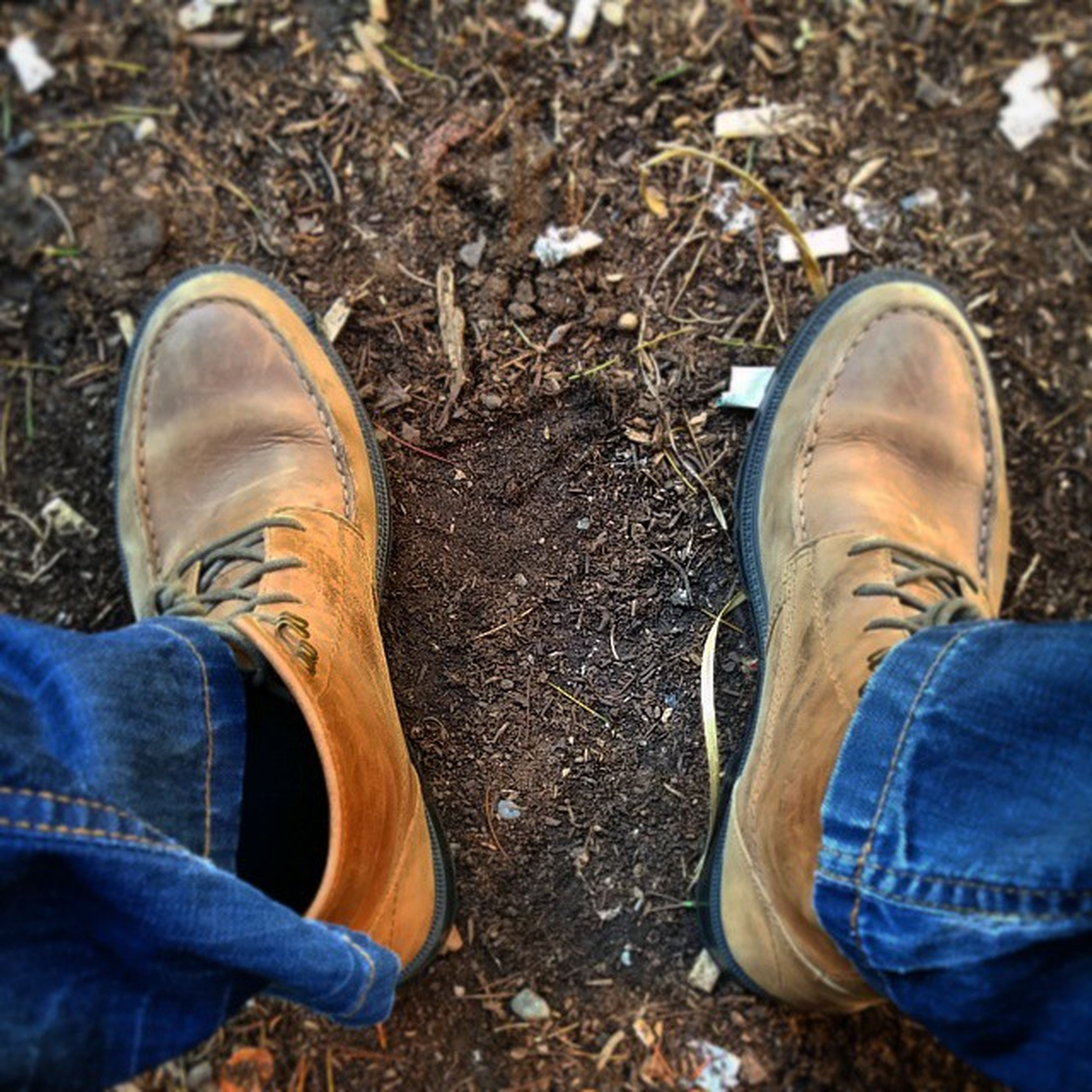 low section, shoe, person, personal perspective, footwear, jeans, human foot, standing, lifestyles, men, high angle view, canvas shoe, leisure activity, shoelace, pair, casual clothing, directly above