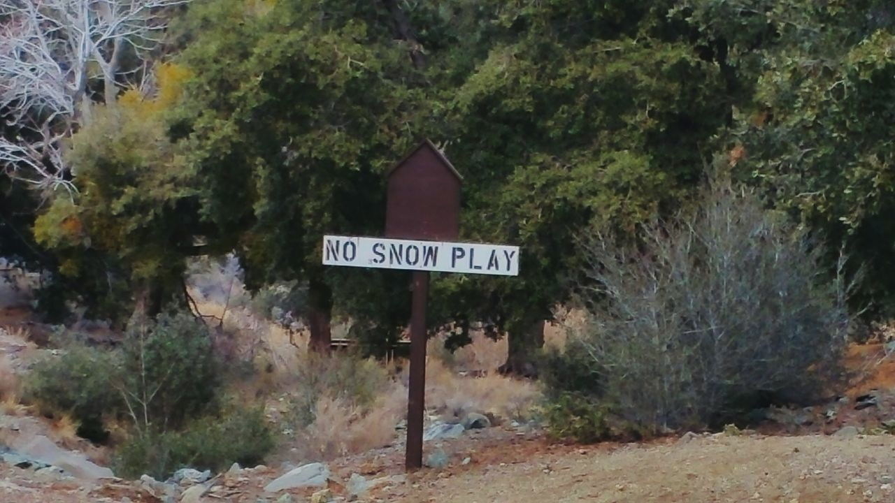 No Snow Playing?!! Well, with no snow, guess that won't be hard to do, ha! Natural Beauty Silly Sign usually lots of snow, so ok, we get it. Dont want to end up squished on road This Week On Eye Em Check This Out