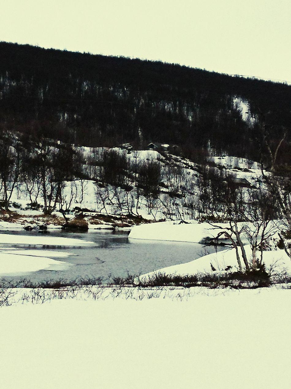 Spring Snow Water Outdoors Tree Day Beauty In Nature Landscape Springtime Härjedalen Kesudalen