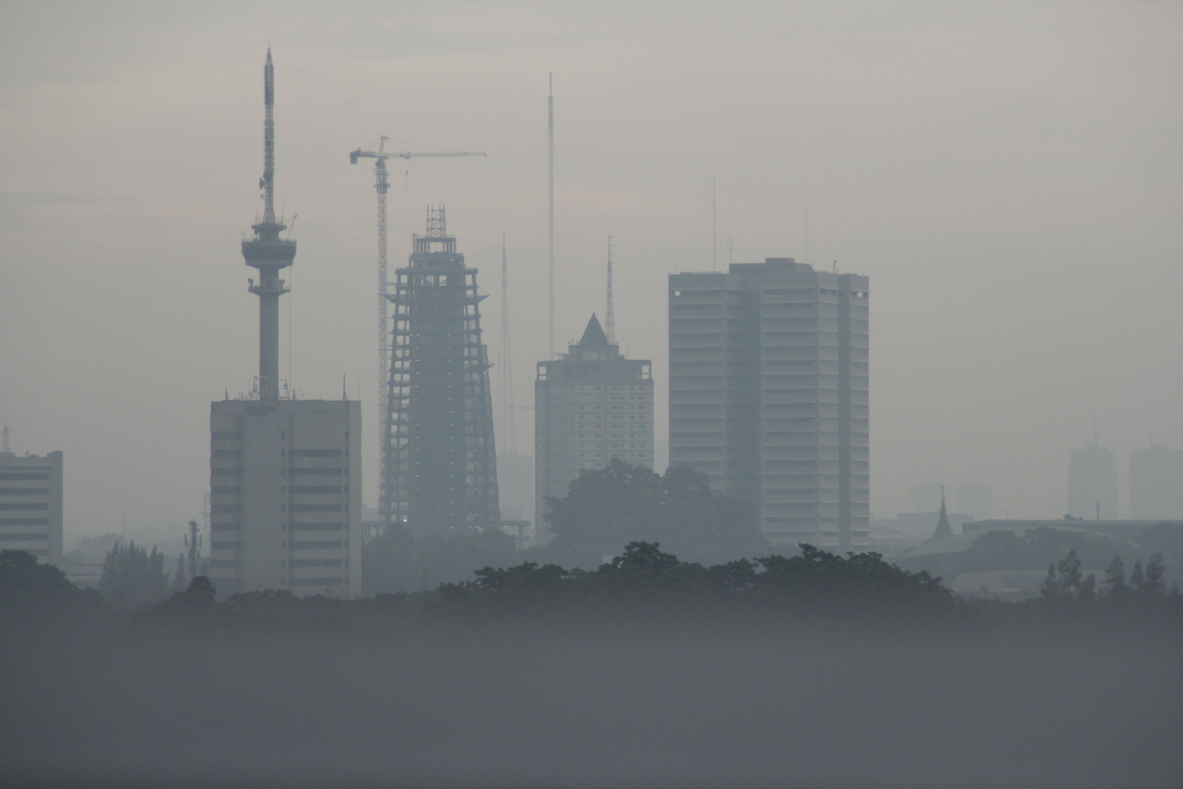 building exterior, architecture, built structure, city, tall - high, tower, skyscraper, sky, fog, cityscape, foggy, copy space, development, outdoors, no people, urban skyline, day, building, tree