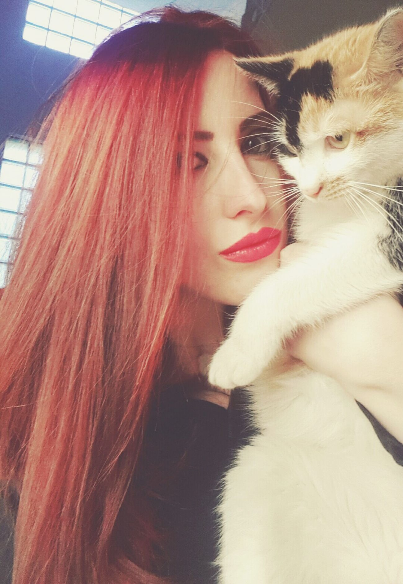 Red Hair That's Me Cat My Cat Cats Red Lips Hello World Check This Out Taking Photos Hanging Out Relaxing Enjoying Life Forever Red I Love It ❤ Self Confidence Home At Home Cheese!