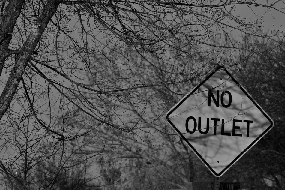 Black And White Branch No Outlet No People Outdoors Sign Spooky Tree Street Sign Despair Branches Atmosphere Lost Wrong Turn