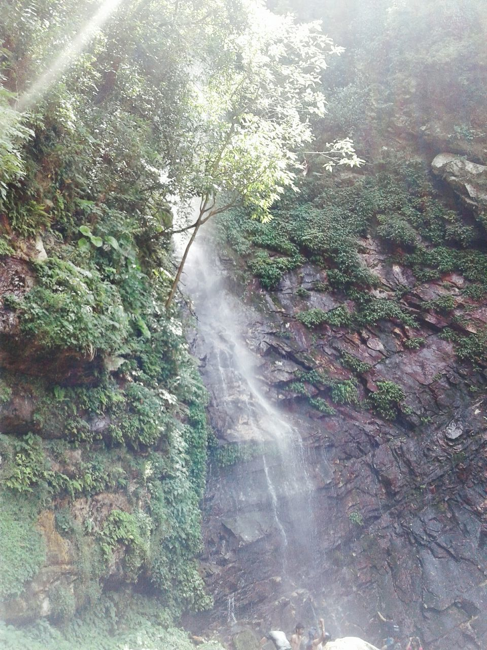 waterfall, no people, nature, beauty in nature, scenics, water, tree, day, tranquil scene, long exposure, outdoors, motion, tranquility, forest