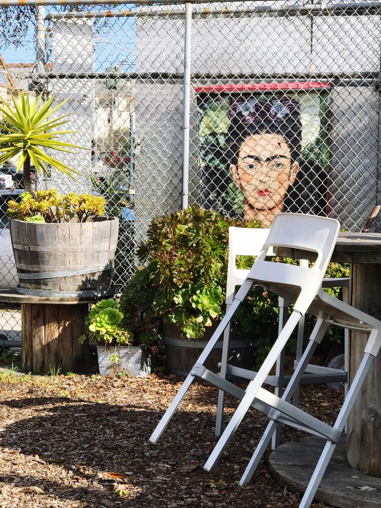 Frida behind the fence //