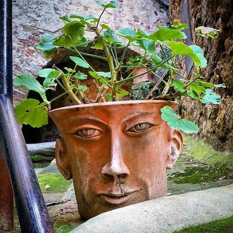 Anghiari, Tuscany, Italy. Anghiari Tuscany Toscana Italia Italy Visitarezzo Italygram Face Plantpot