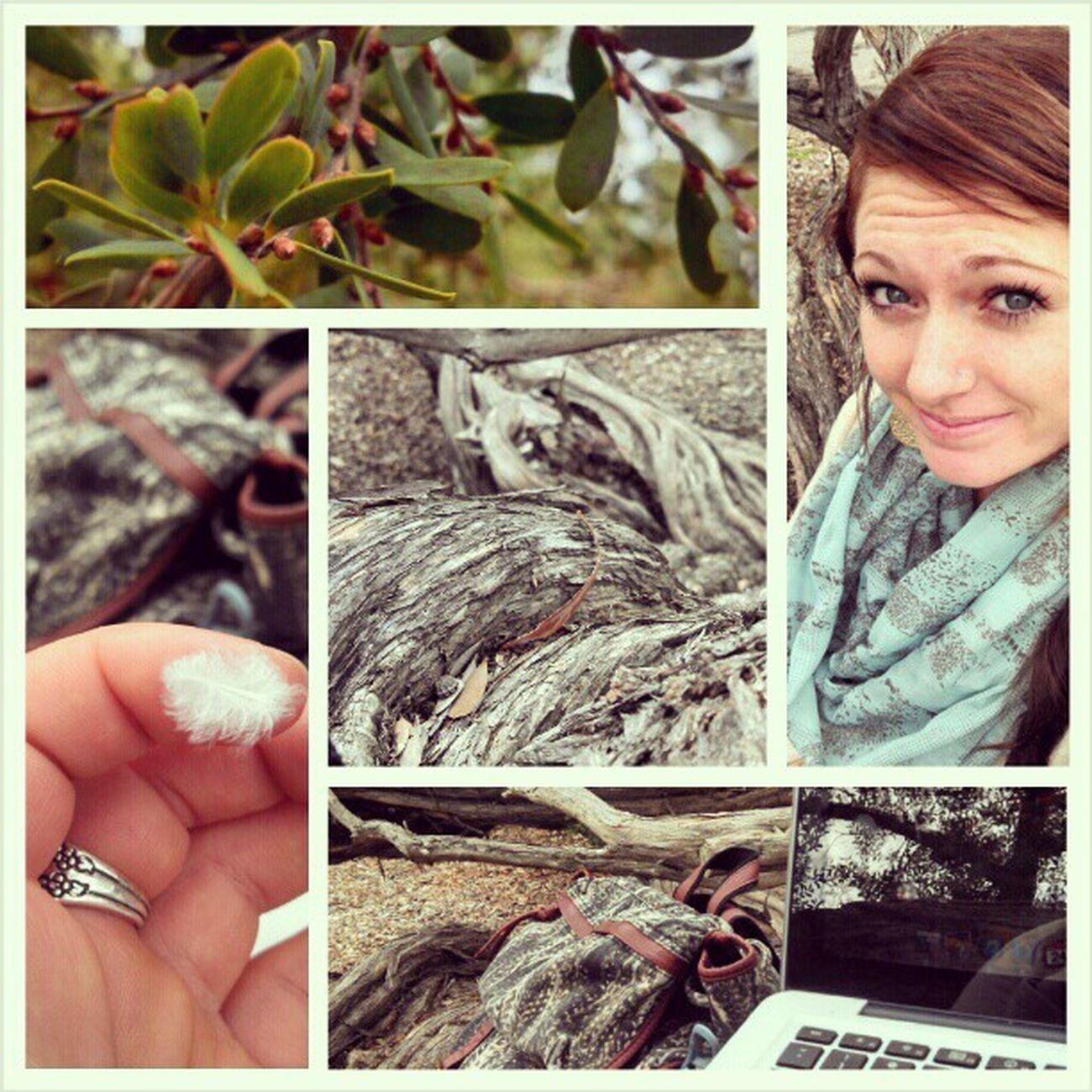 New favorite study spot Inatree Birdies Naturelove Hippiester rainyday thegrasswaswet nowmybutthurts worthit