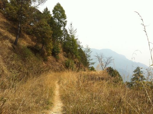 On a hike at Shivapuree national park, Kathmandu by Elizabeth Evans