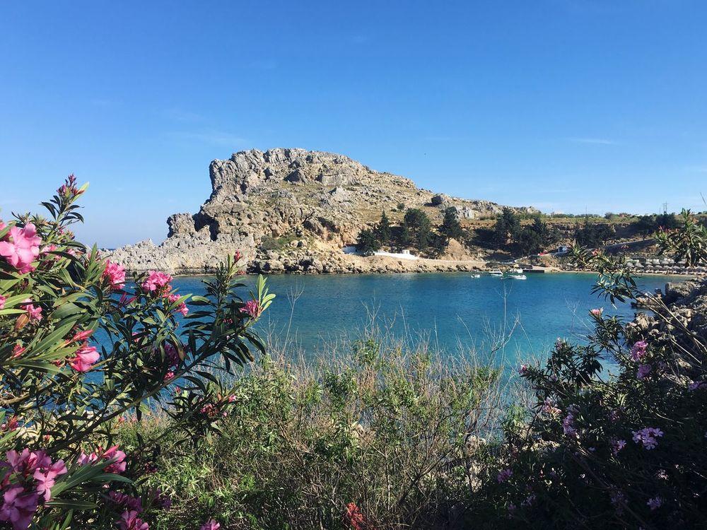Ródos Rhodes Sea Bay Mediterranean  Flowers Vacation Nature Traveling Greece Beach Way Saint Paul's Bay Lindos Nature's Diversities The Great Outdoors - 2016 EyeEm Awards