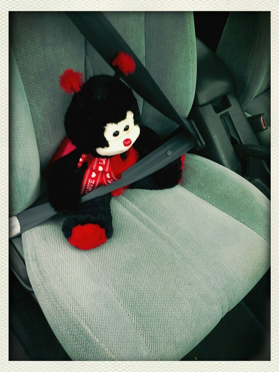 Buckled Up And Ready To Go!