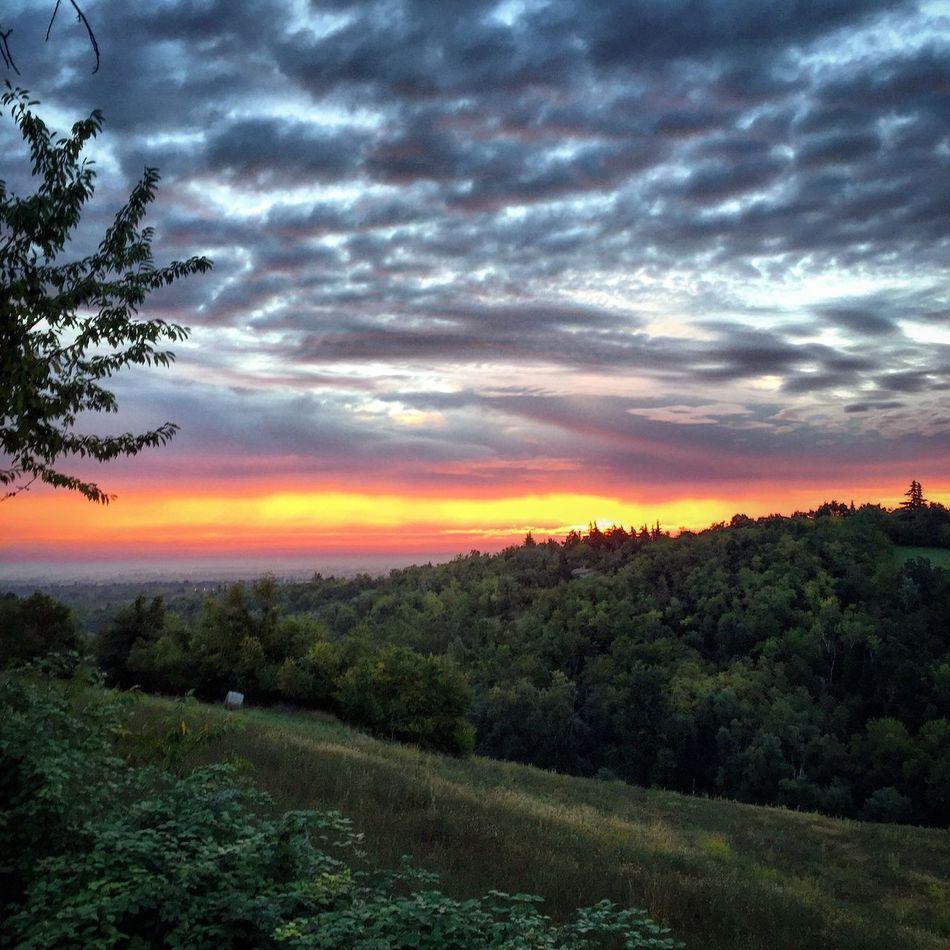 Sunrise Reggioemilia Nature_collection Colorful
