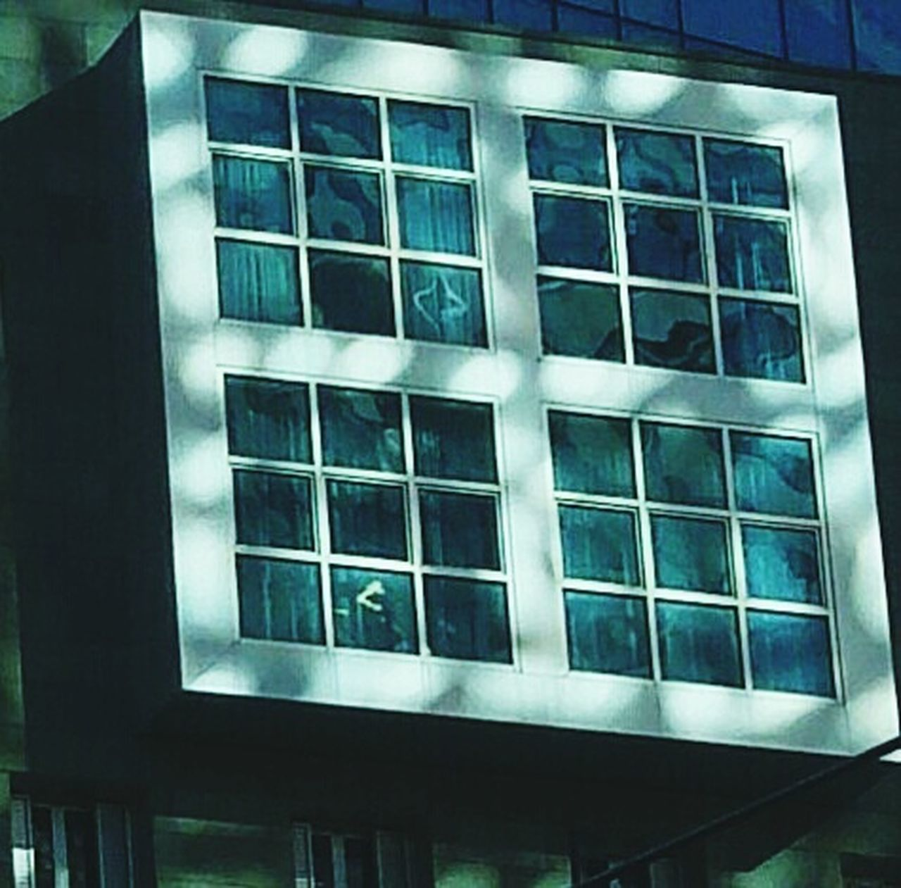 Architecture Built Structure Windows Glass Modern Sunlight Shadow Bilbao Adapted To The City Sun And Shade Shadows & Lights Architecture Sun Rays Travel Window Urban Geometry Urban