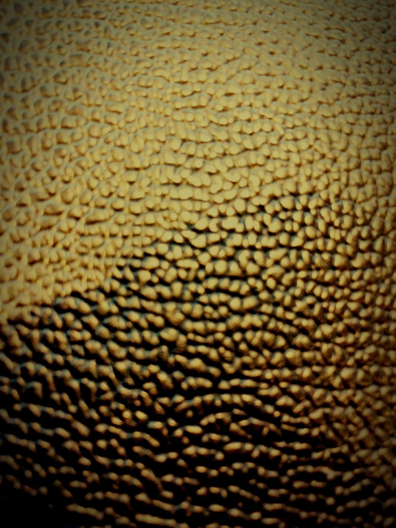 Textured  Ask Me Questions Comments Welcome First Eyeem Photo Testing Camera Comments Are Welcome FirstEyeEmPic Artistic Textured