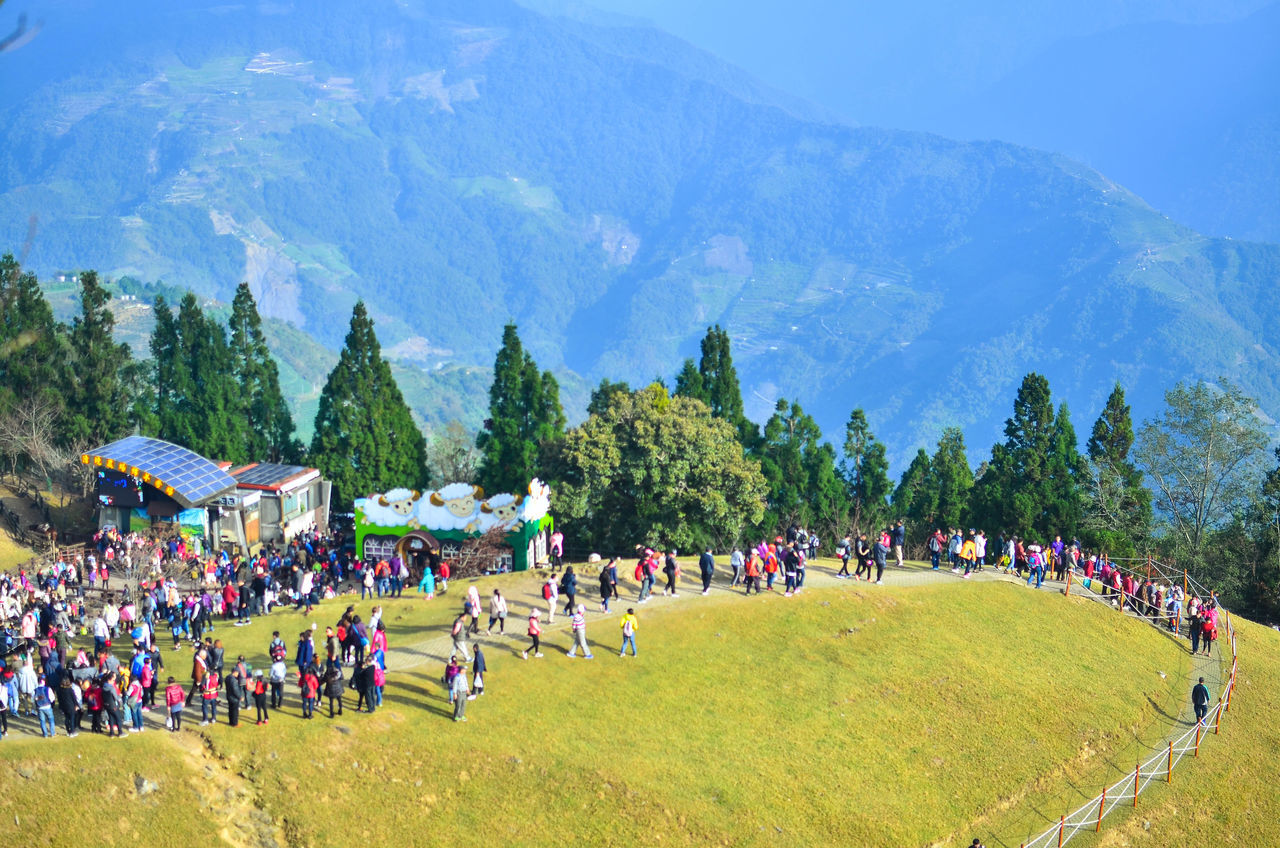 Tourists flock to Green Green Grasslands in Cinging Farm Adult ASIA Celebration Cingjing Farm Crowd Cultures Day Green Green Grassland Large Group Of People Lifestyles Men Mountain Nature Outdoors People Real People Sheep Farm Sky Taiwan Tourist Attraction  Tradition Tree Women