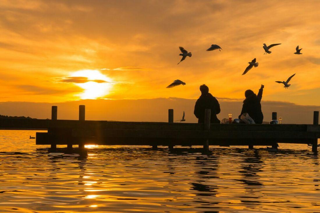 Golden Moments 43 Golden Moments  Sonnenuntergang Im Sommer Sonnenuntergänge Sonnenuntergang Water Meerblick Meer