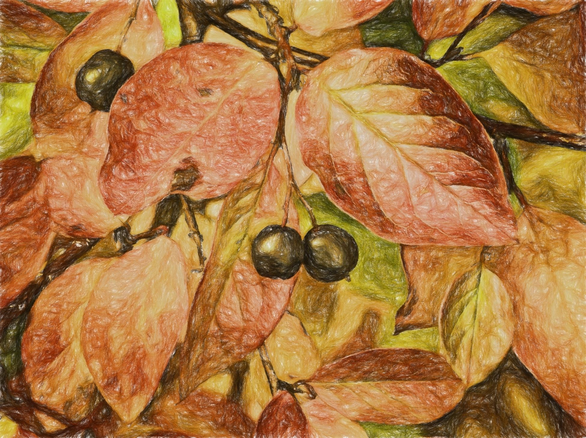 Capture The Moment Autumn Sketch