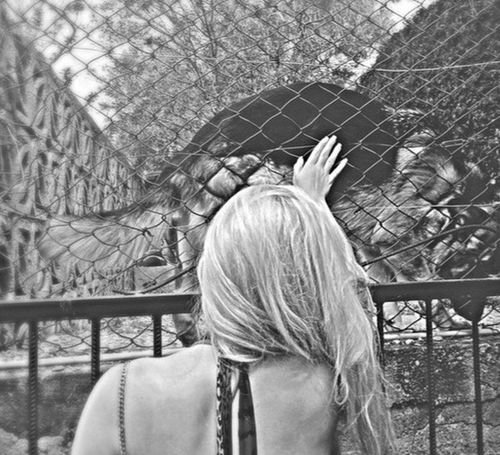 Rear View One Person Real People Outdoors Day Headshot Women Leisure Activity One Woman Only Me Young Women No People Photography Nature Is Art Lonely Cage Dog Lonely Dog No People, Naturelovers Nature Beauty Nature Photography Beauty In Nature Nature Close-up