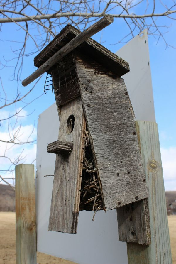 Abandoned Places Birdhouses Rotting Away Bird Nest Gettng Inspired Countryside Vacancy? Twigs i think i will repair it and paint it up and see what happens - stay tuned . . . .