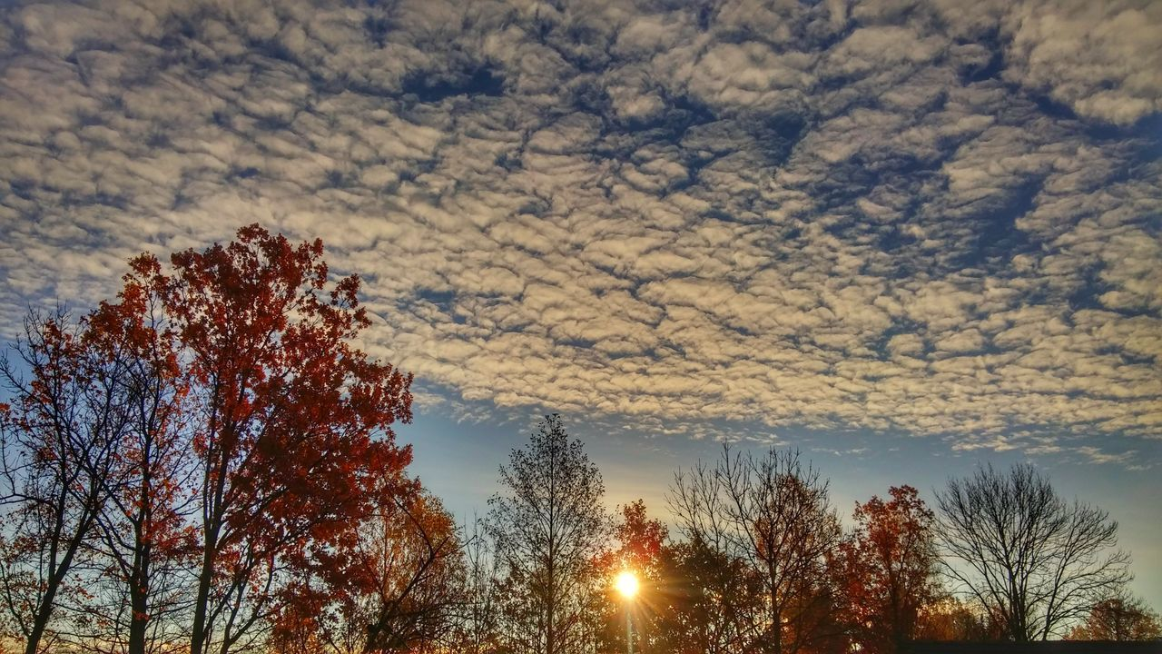 Nature Sunset No People Sky Beauty In Nature Day Colors LG G3 LGphotography LG G3 Photography Scenics Autumn Colors Autumn Mobile Phone Today's Sunrise Sun Sunrise_Collection EyeEm The Best Shots Eyem Gallery Eyeemphoto Eye Em Nature Lover