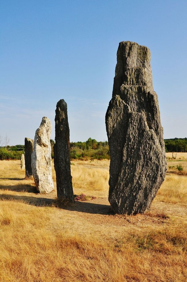 Megaliths Standing Stones Prehistoric Brittany Bretagne St. Just Afternoon Sunlight And Shadows Tranquil Scene Tree Field In A Row Outdoors No People Non-urban Scene Remote Solitude Memories Stone Textures