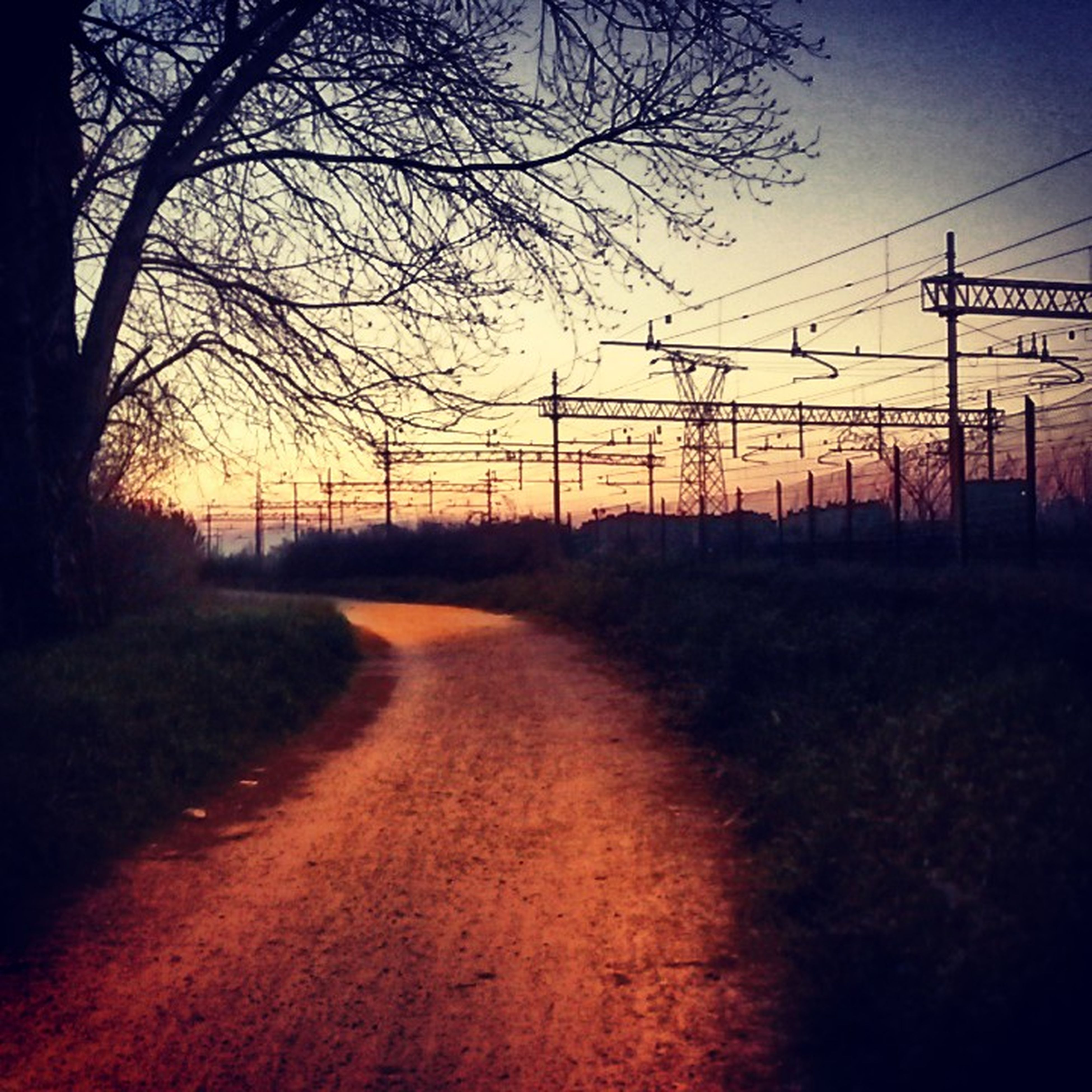 sunset, tree, the way forward, sky, transportation, orange color, electricity pylon, road, bare tree, tranquility, diminishing perspective, landscape, power line, silhouette, tranquil scene, nature, scenics, field, vanishing point, country road