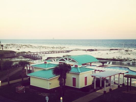 Gulf Shores by Lindsay Gross