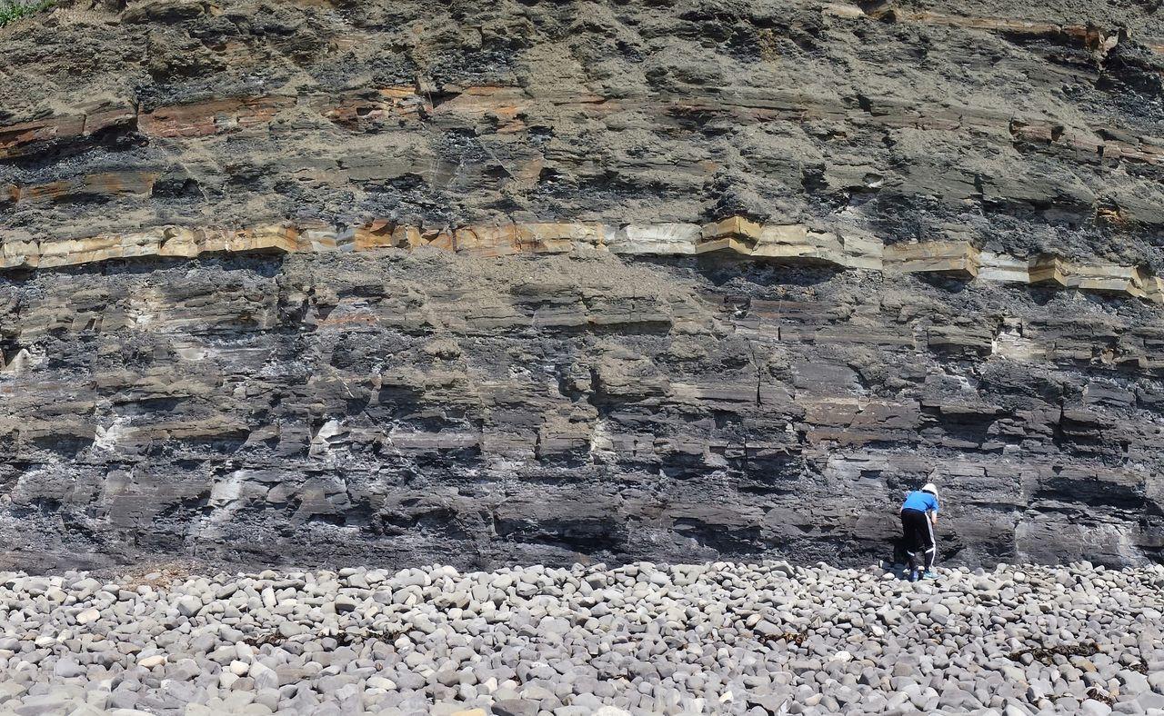 Cliff Face Fossil Hunter Kimmeridge Bay Kimmeridge, Dorset Jurassic Coast Isle Of Purbeck May 2016 Geological Strata England, UK