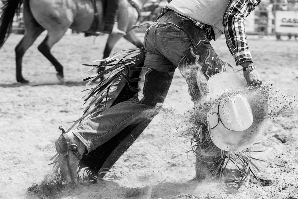 Beautiful stock photos of cowboy, Cowboy, Cowboy Hat, Day, Field