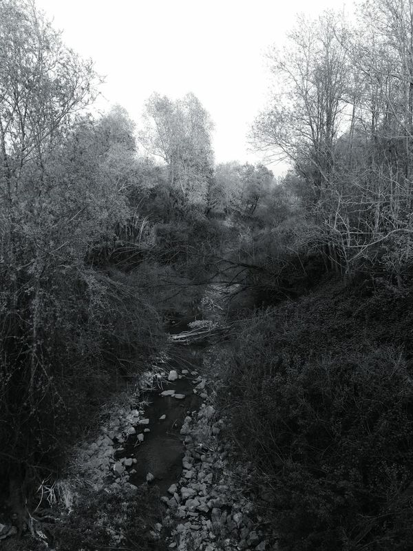 Paceful Nature Non-urban Scene River View River Rocks The Way Forward Tranquility No People Silence Of Nature Bw Alone