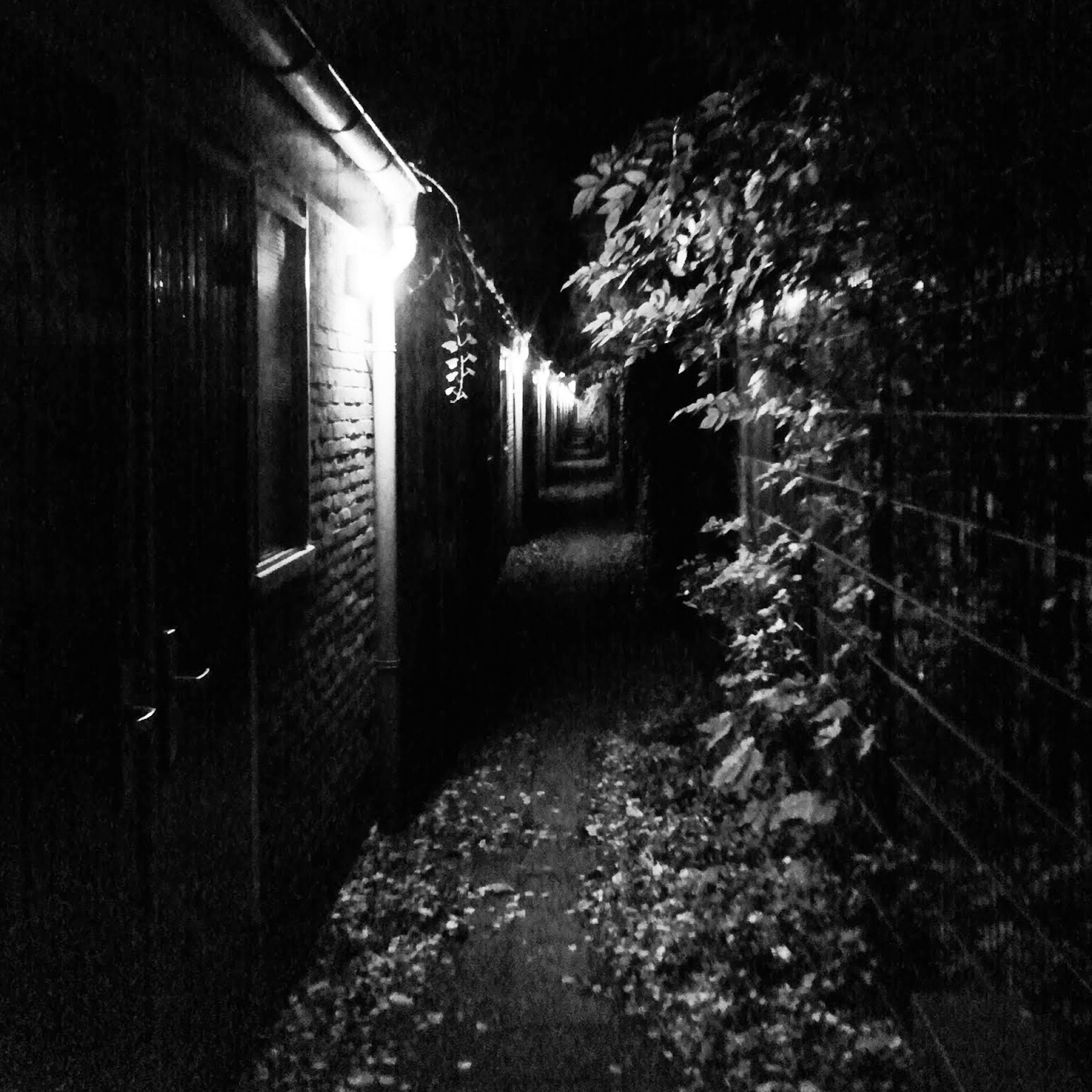 architecture, built structure, night, abandoned, building exterior, the way forward, illuminated, wall - building feature, building, house, old, obsolete, damaged, no people, empty, deterioration, run-down, indoors, absence, wall