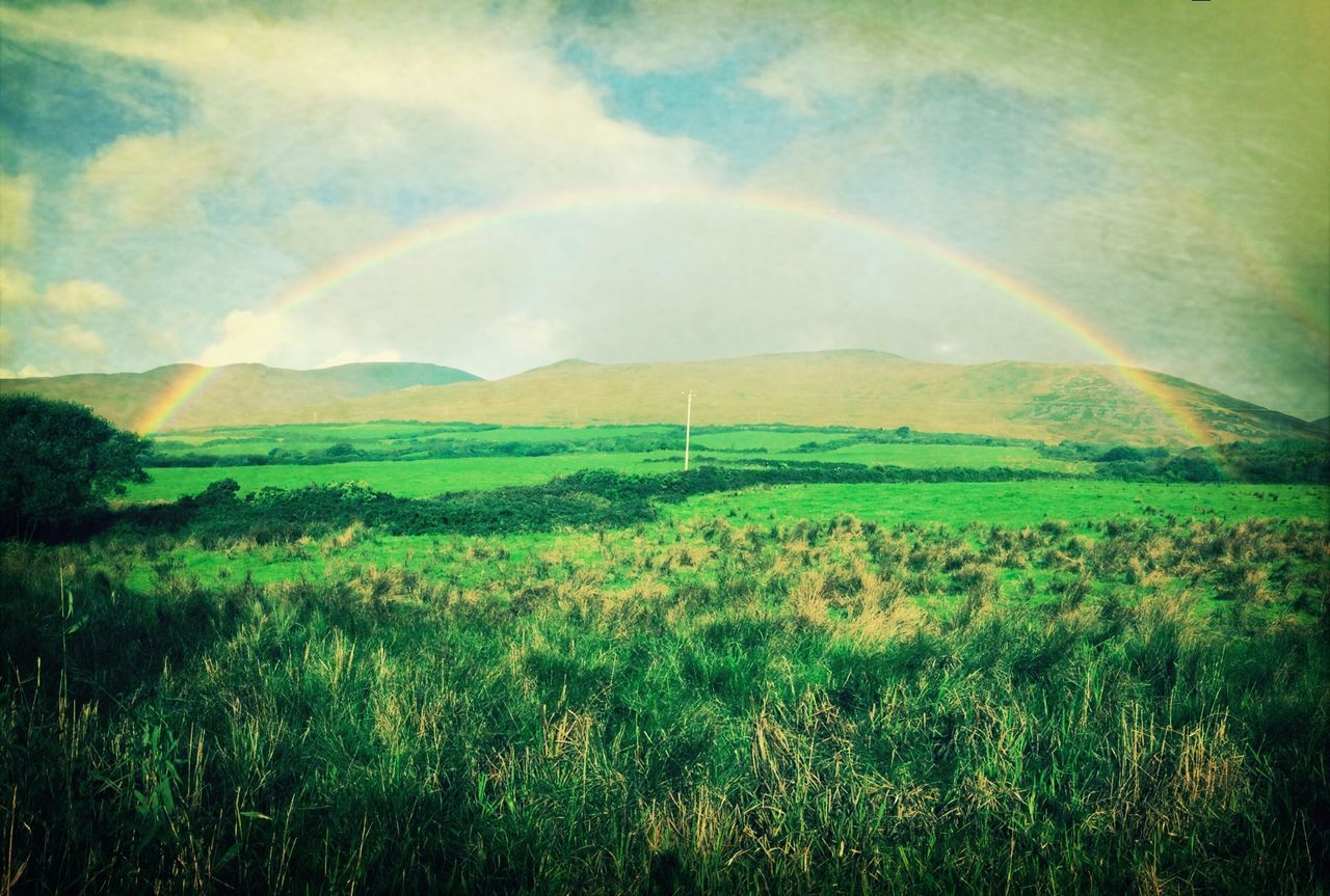 Colors Of Autumn Ireland Kerry Ireland, Dingle Bay Rainbow
