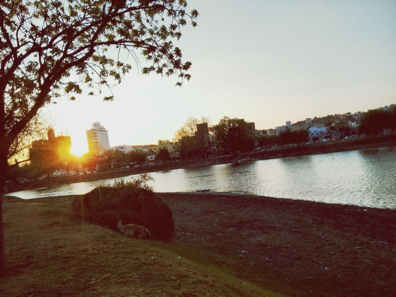 Sunset Sunny☀ Springtime Riverside Nature VillaCarlosPaz Cordoba-argentina