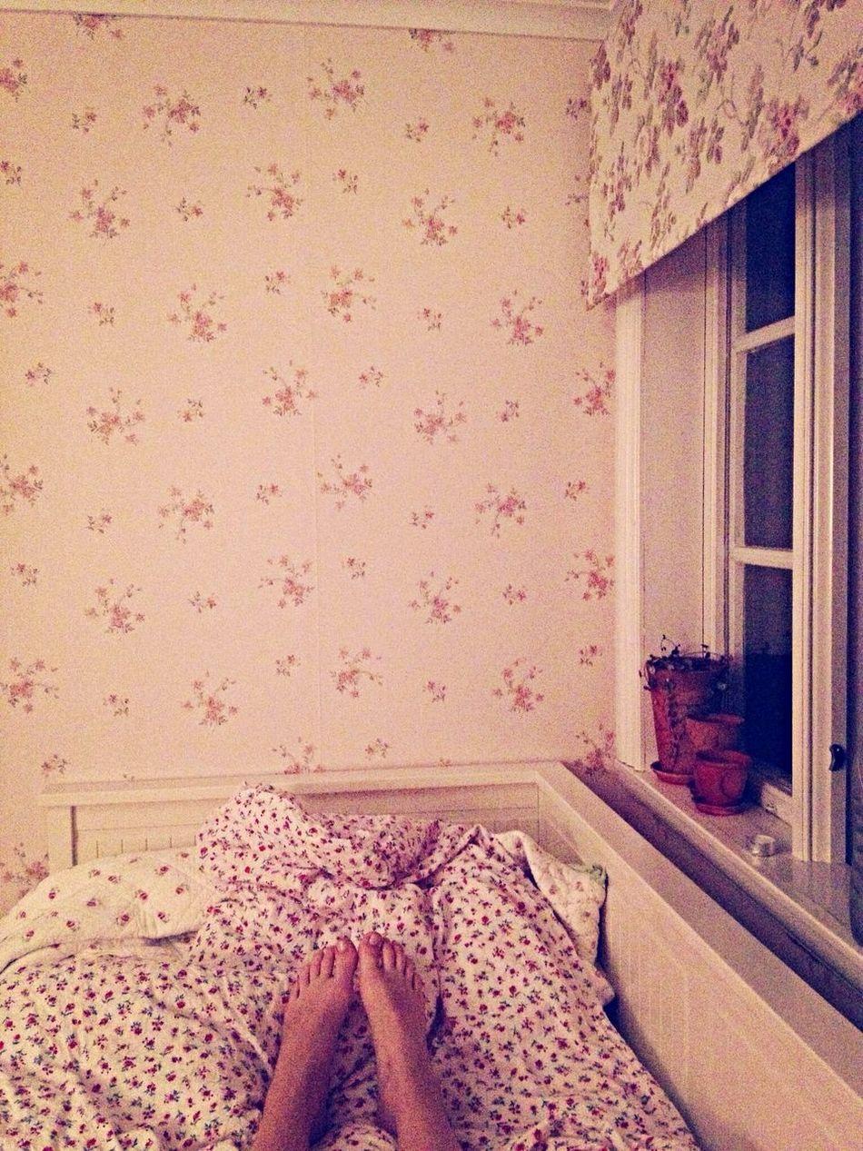 Godnatt från ett regnigt blomsterparadis Rain First Eyeem Photo