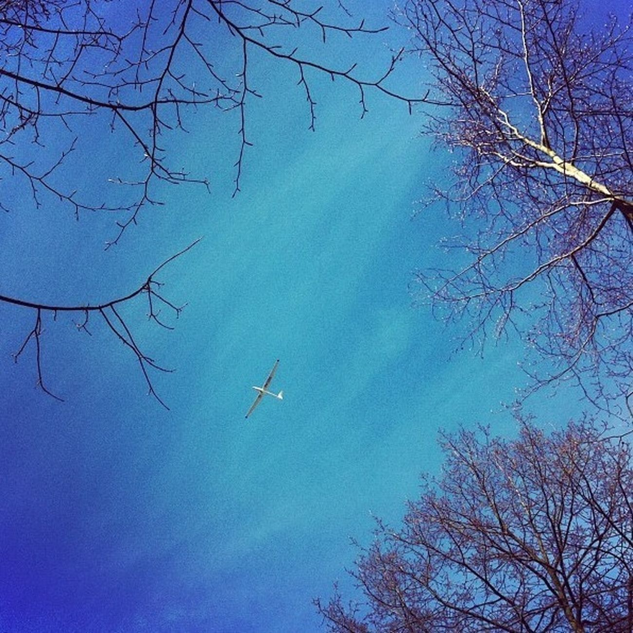 Blue Sky Memories