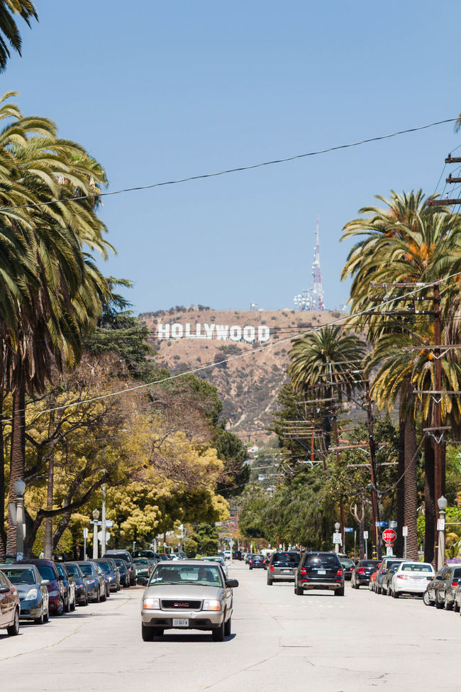The iconic Hollywood sign. Blue Sky California California Love City City Life City Of Angels Famous Places Hollywood Hollywood Hills Hollywood Sign Iconic Sign La La La Land Leading Lines Los Angeles, California Los Ángeles Losangeles Palm Tree Street Street Life Summertime Travel Travel Photographer Travel Photography