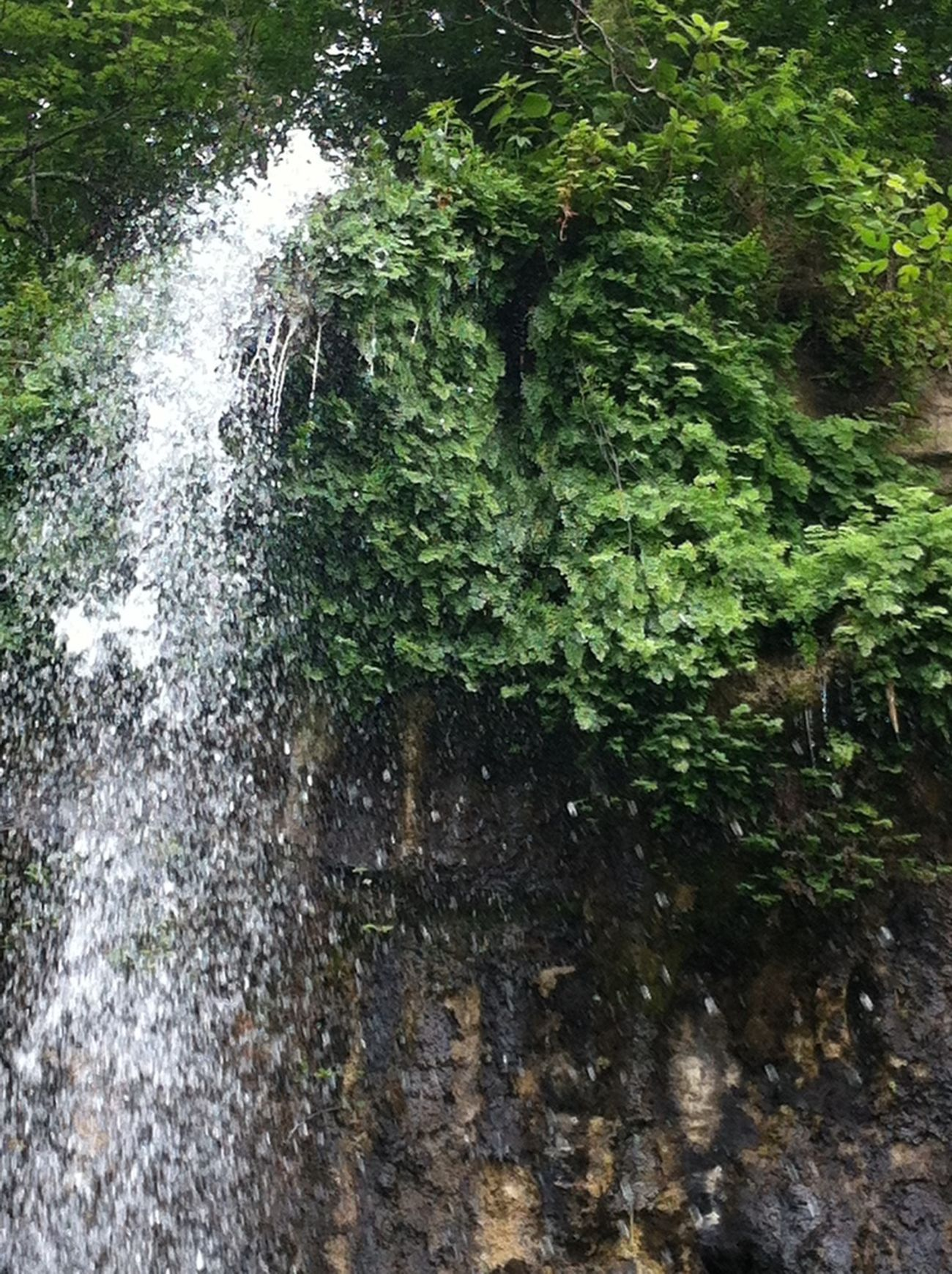 So much rain = lovely and unexpected waterfalls!