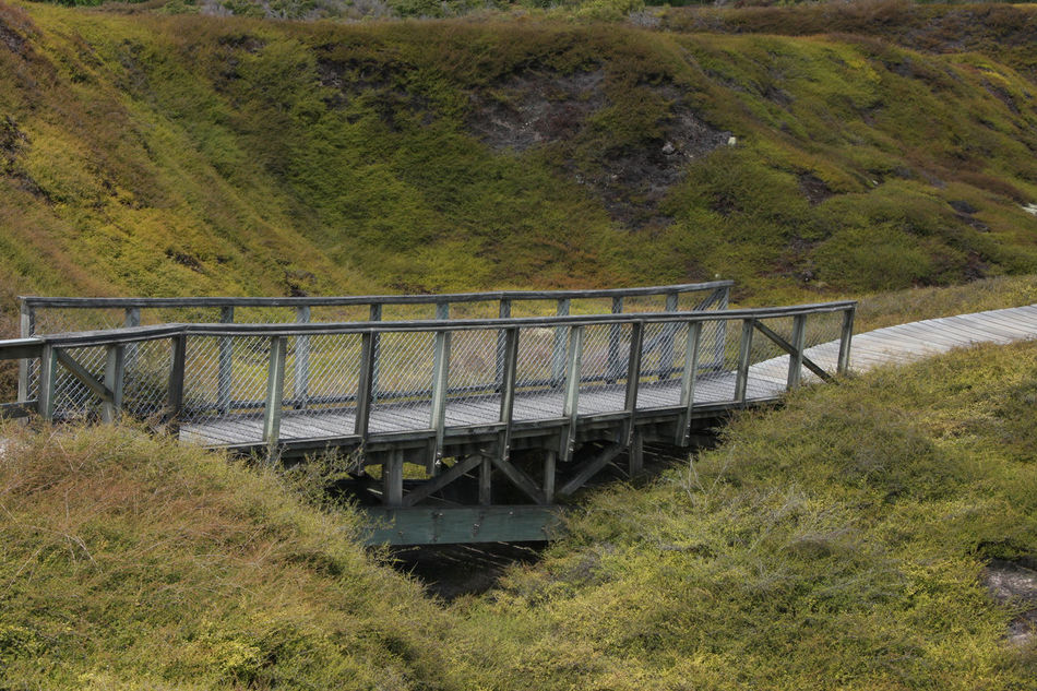 Bridge Bridge - Man Made Structure Connection Craters Of The Moon Craters Of The Moon National Monument Day Grass Green Color Landscape Nature Nature New Zealand New Zealand Scenery Northislandnz NZ Nz North Island NZ South Island Plant Railing Tranquil Scene Thiscouldbenewzealand Nils Nowacki