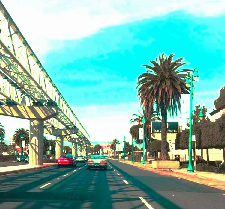 Oakland, Ca. Palm Tree Transportation Bridge - Man Made Structure Outdoors Cloud - Sky Road Sky Car Tree Day City