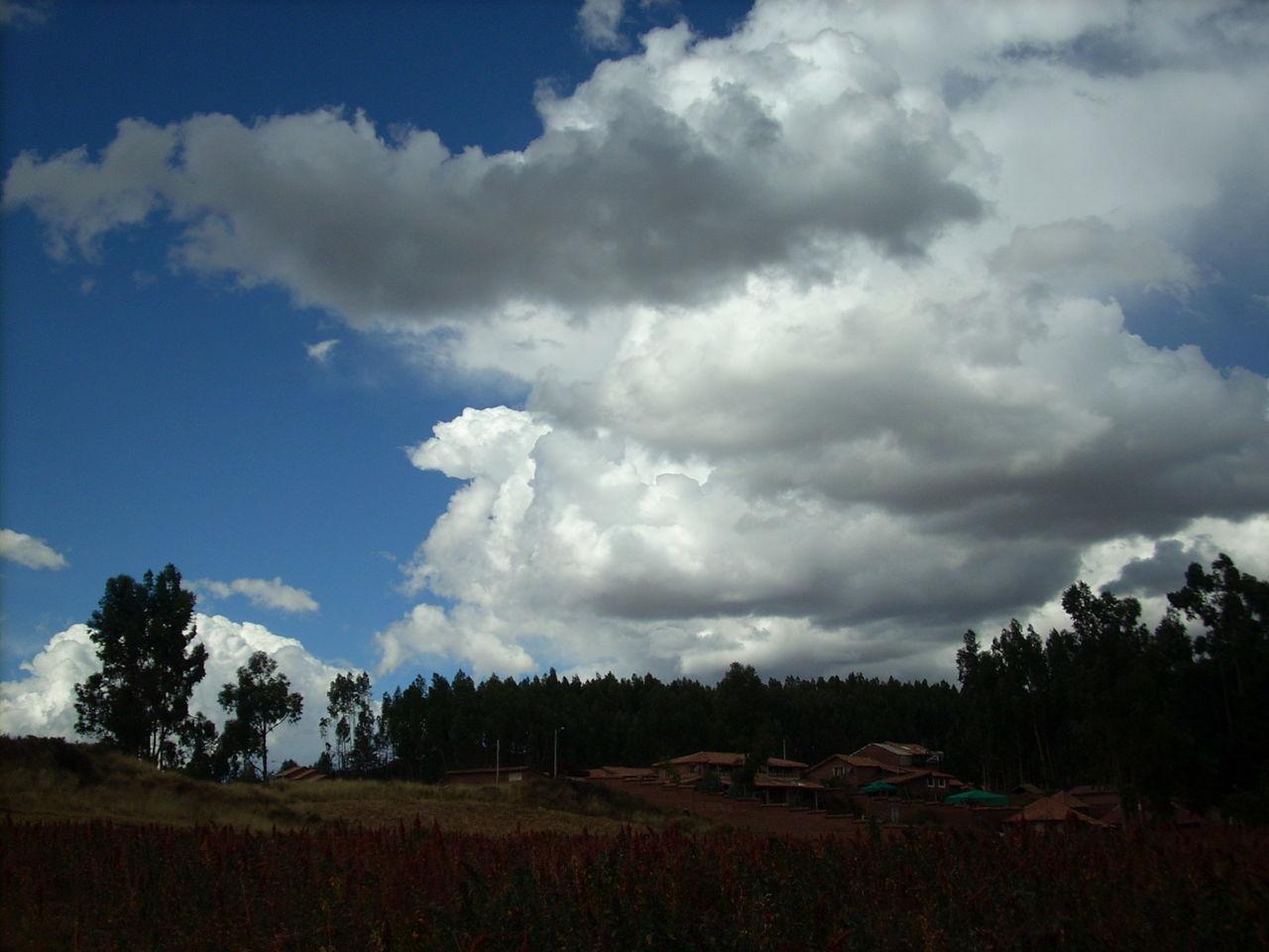Cloud Cloudscape Mountain Nature Quinoa Quinoa Plant Red