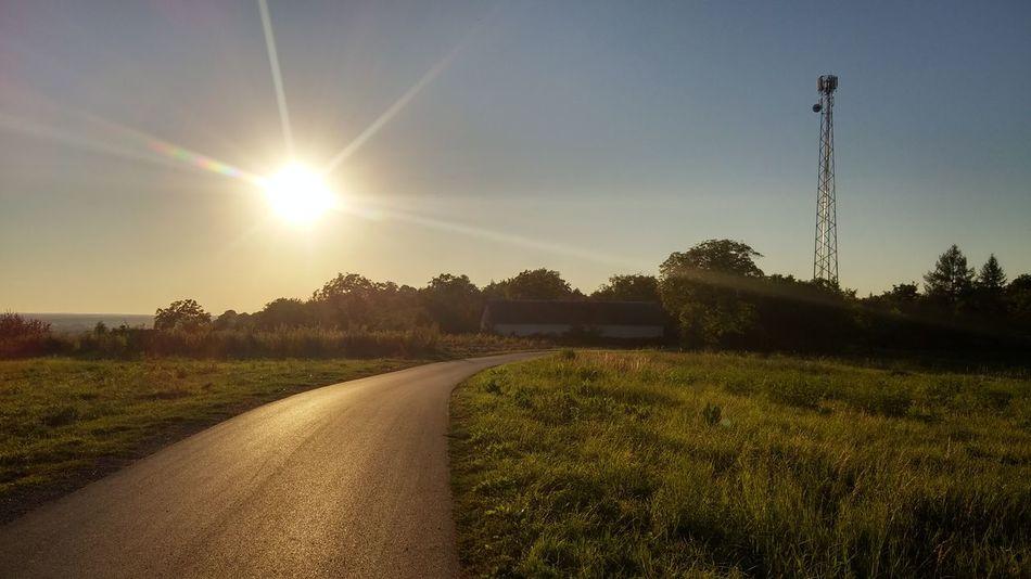 Original Photography Sun Road Landscape Day Under The Sun Summer Heat Green Poland Krzeszow