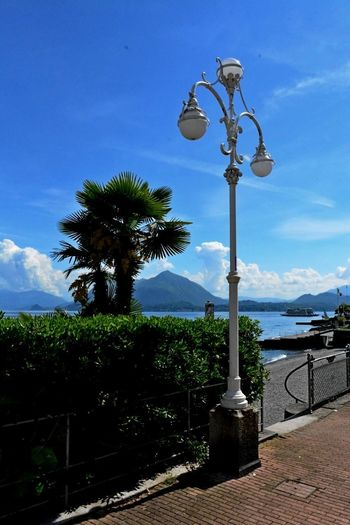 Stresa Italy Beauty In Nature Blue Cloud - Sky Day Lighting Equipment Mountain Nature No People Outdoors Palm Tree Scenics Sky Street Light Tree