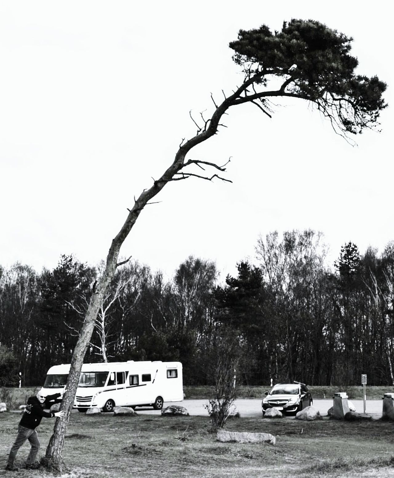 Tree Car Transportation Land Vehicle Outdoors Sky Day No People Branch Water Nature The Great Outdoors - 2017 EyeEm Awards EyeEmNewHere The Street Photographer - 2017 EyeEm Awards Schweden Ystad Beach Ystad Ystadssaltsjöbad