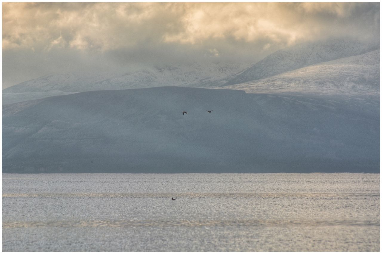Ducks fly past snow-capped and cloudy Isle of Arran - series Landscape Nature Tranquility Beauty In Nature Tranquil Scene Scenics Outdoors Sand No People Mountain Day Sky Ducks Birds Bird Photography EyeEm Gallery EyeEmBestPics Eye4photography  Arran  Isle Of Arran  EyeEm Mountains Tranquility Beauty In Nature Winter