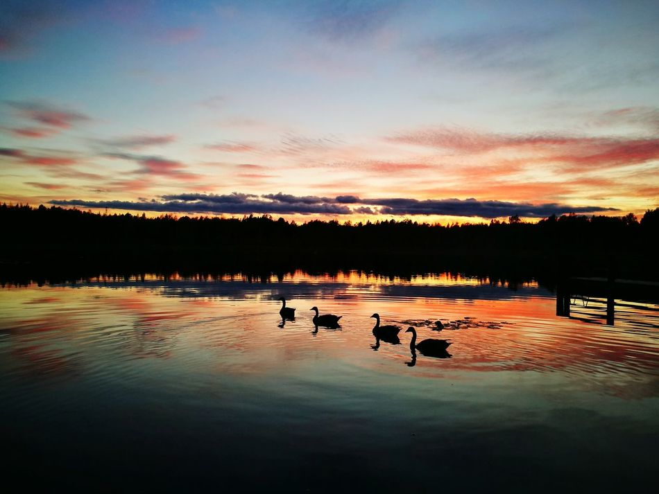 Finland Summer Sunset Reflection Beauty In Nature Outdoors Lake First Eyeem Photo
