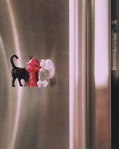   Refrigerator Dogs   Refrigerator Magnets Stainless Steel  Dogs Poodle Fire Hidrant Vertical Lines Indoors  Toy Focus On Foreground Softness No People Reflections Magazine Art Room For Copy Room For Text Shiny One Color Dogs Fire Hydrant
