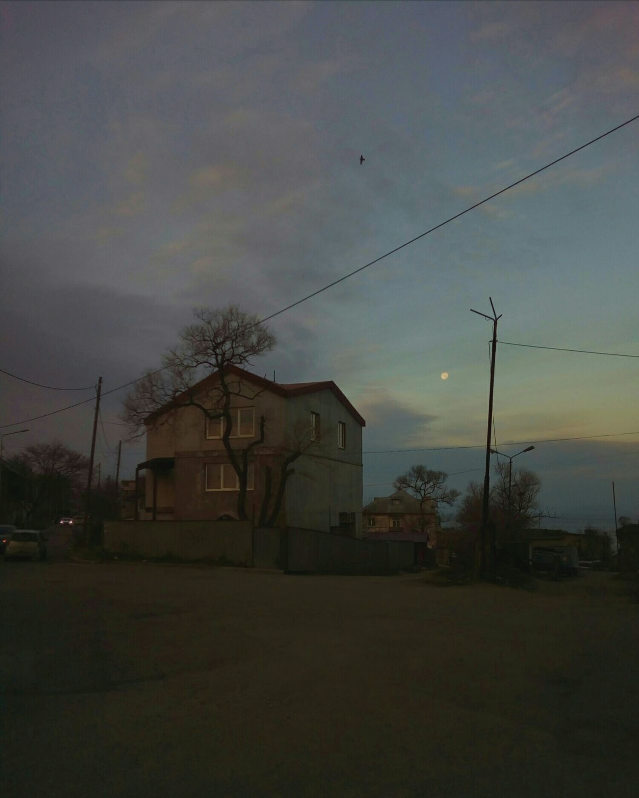 Morning with the moon House Built Structure Sky Cloud - Sky Moon Morning Morning Light Morning Time Crossroads Street Road Tree Autumn November City