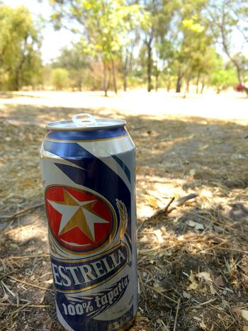 No People Day Close-up Outdoors Nature Beer Beer Time Star Estrella