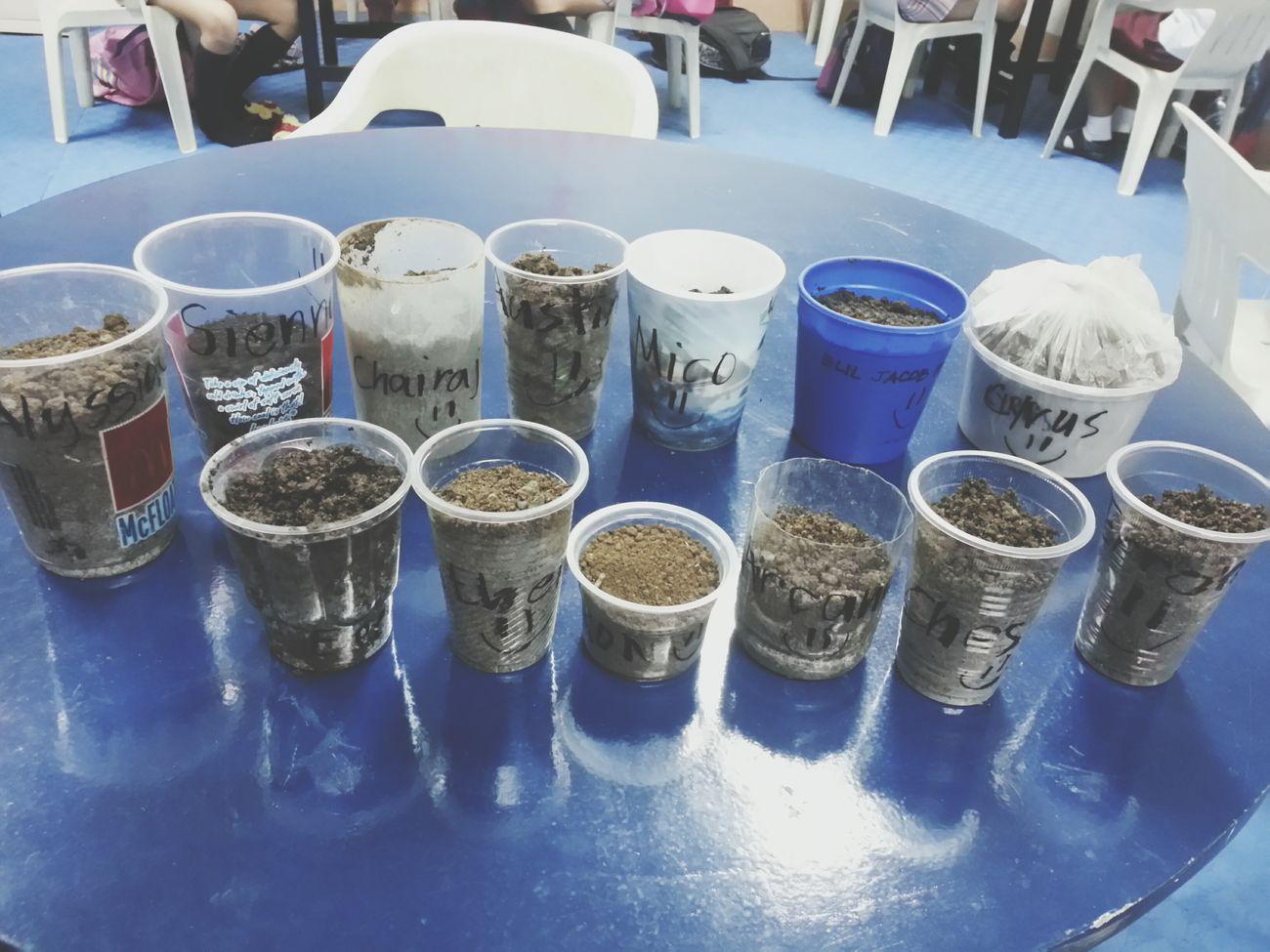 Make planting a habit. Plants Planting Seeds