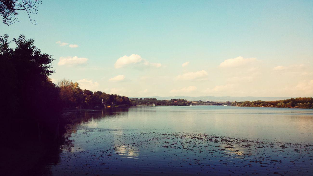 Borkovac lake, Srem. Serbia. Lake Nature