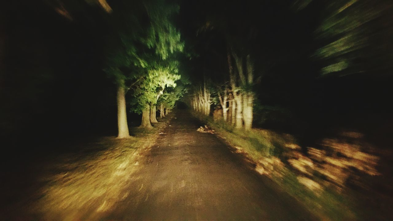 the way forward, night, nature, no people, tranquility, outdoors, beauty in nature, tree